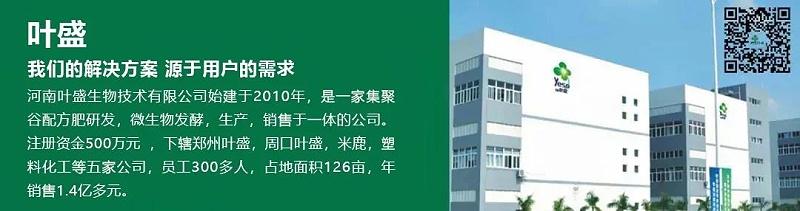 寰�淇″�剧��_20210326103521