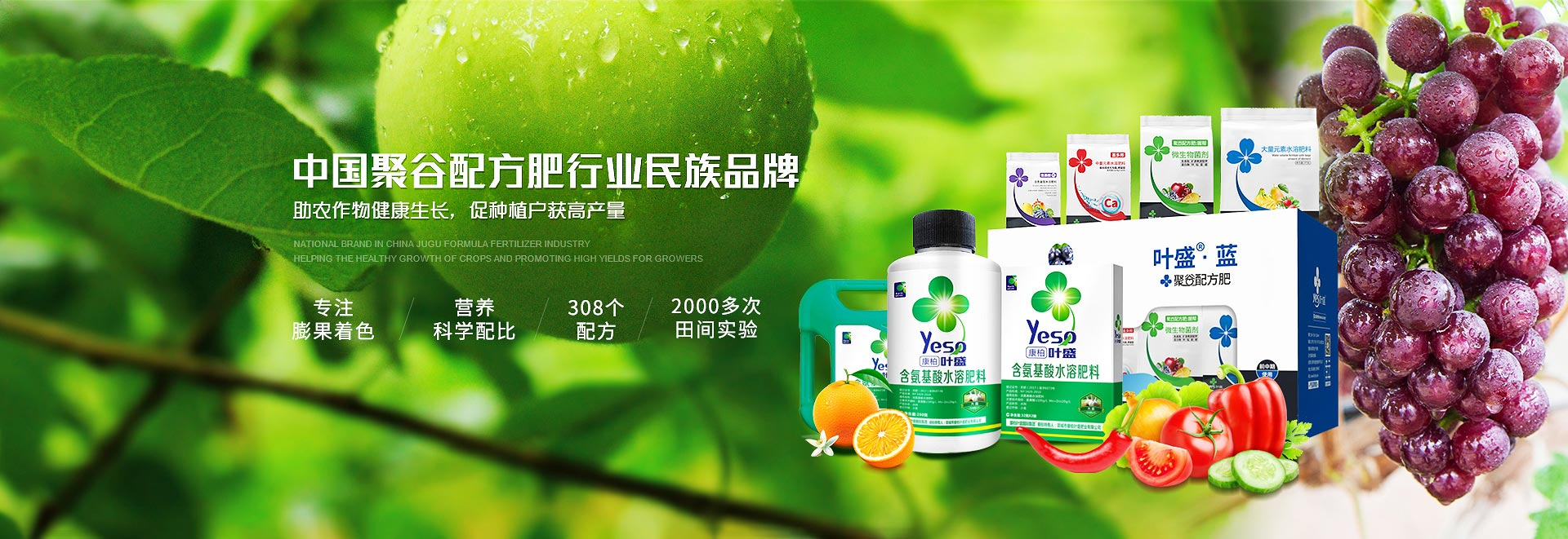 中国聚谷配方肥行业民族品牌