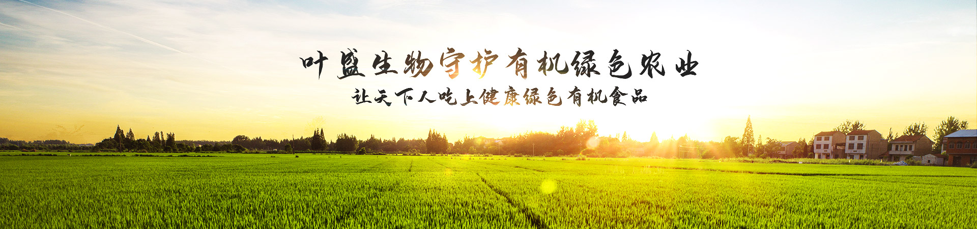 �剁�����╁���ゆ���虹豢�插��涓�